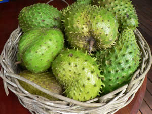 durian fruit in spanish fruits for weight loss