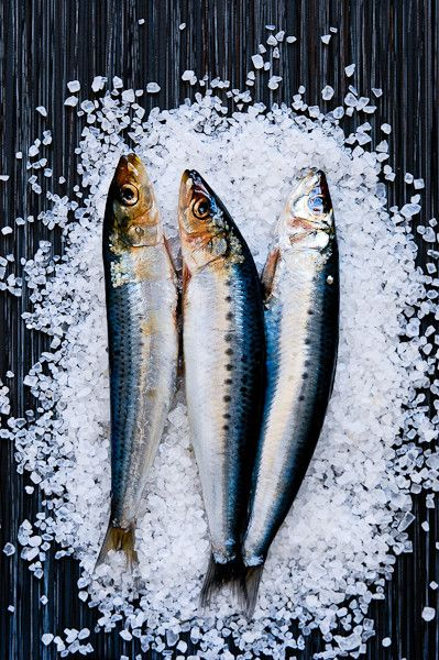 My top 10 safe to eat low mercury seafoods and my top for Fish with low mercury