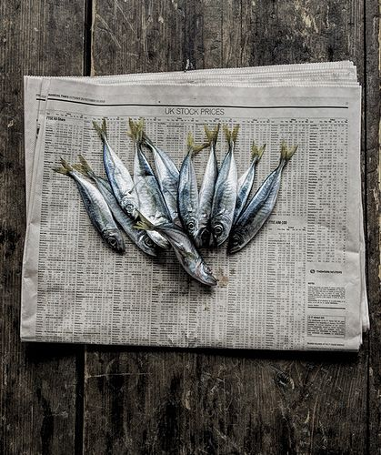 My top 10 safe to eat low mercury seafoods and my top for Fish with high mercury