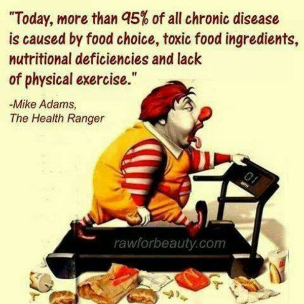Toxic Ingredients Found In Mcdonald S Food
