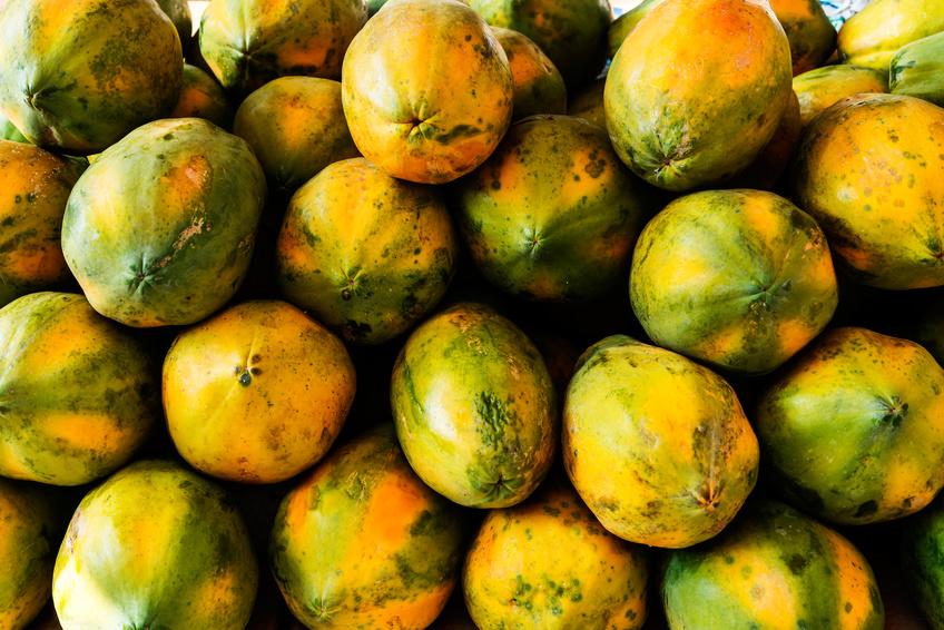 My Top 10 Actually Top 14 Benefits Of Papaya The Gaia